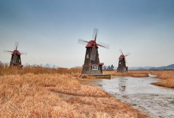 Cara Lama Yang Terbukti Bagus Untuk Mengawali Belajar Bahasa Belanda