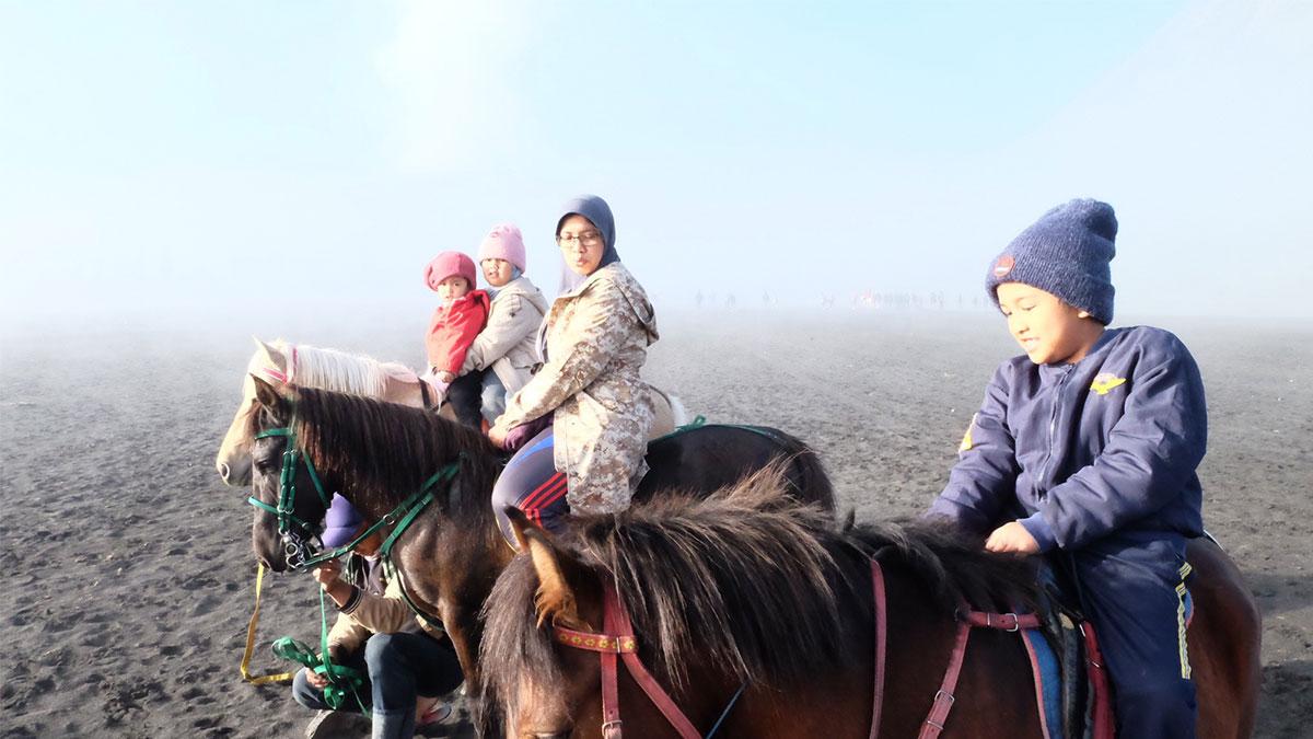 wisata kuda di bromo